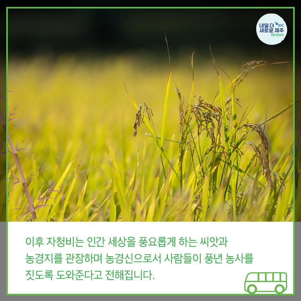 이후 자청비는 인간 세상을 풍요롭게 하는 씨앗과 농경지를 관장하며 농경신으로서 사람들이 풍년 농사를 짓도록 도와준다고 전해집니다.