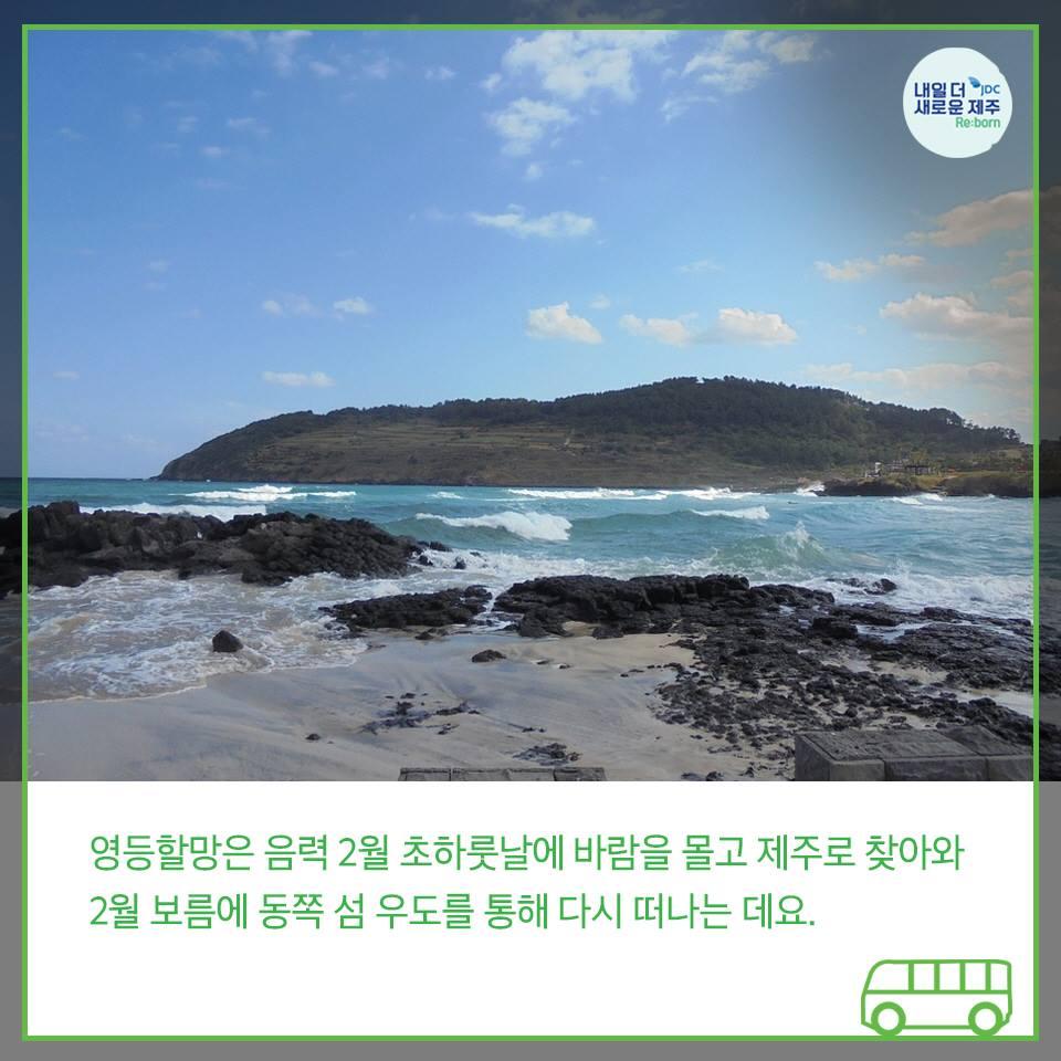 영등할망은 음력2월 초하룻날에 바람을 몰고 제주도로 찾아와 2월 보름에 동쪽 섬 우도를 통해 다시 떠나는 데요.