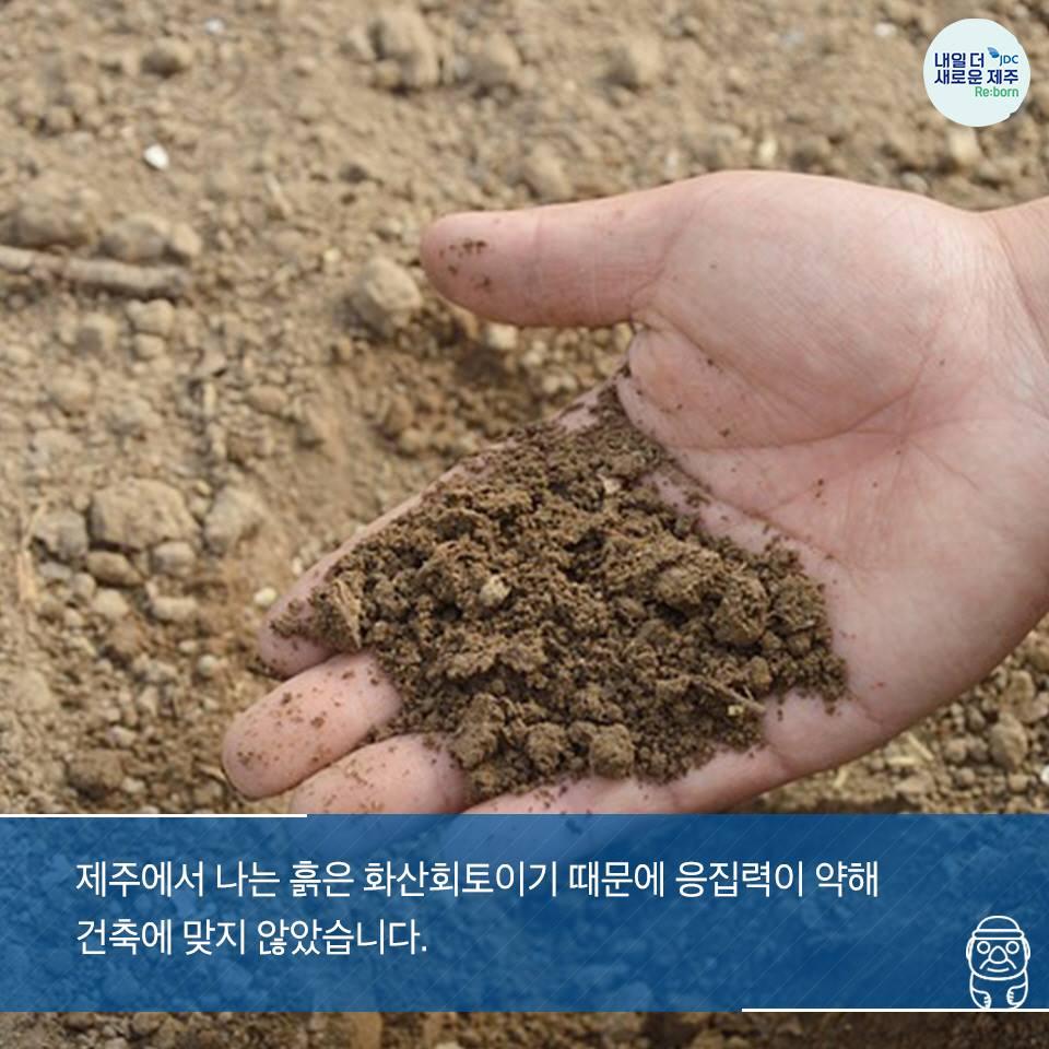 제주에서 나는 흙은 화산회토이기 때문에 응집력이 약해 건축에 맞지 않습니다.