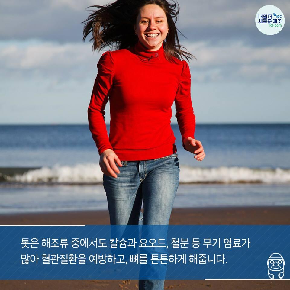 톳은 해조류 중에서도 칼슘과 요오드, 철분 등 무기 염료가 많이 혈관질환을 예방하고, 뼈를 튼튼하게 해줍니다.