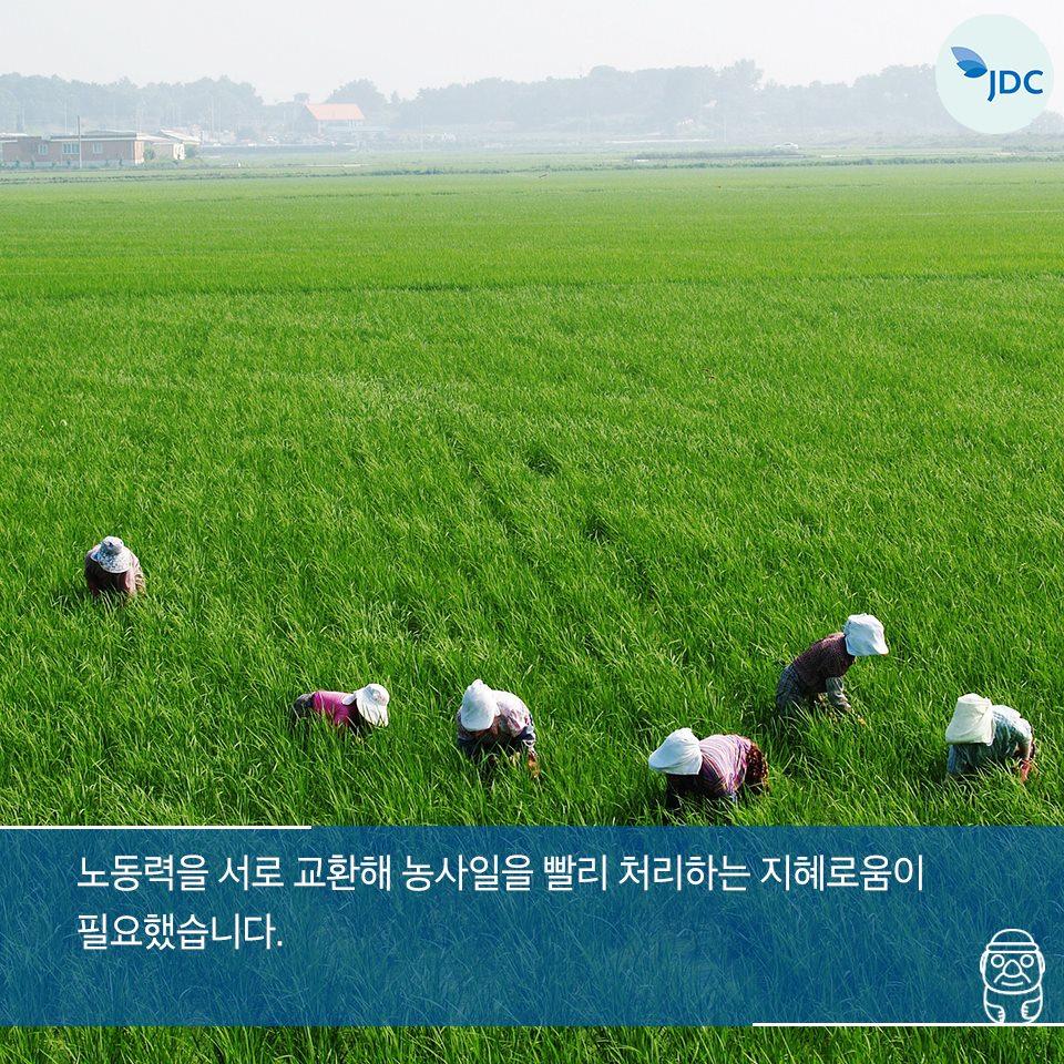 노동력을 서로 교환해 농사일을 빨리 처리하는 지혜로움이 필요했습니다.