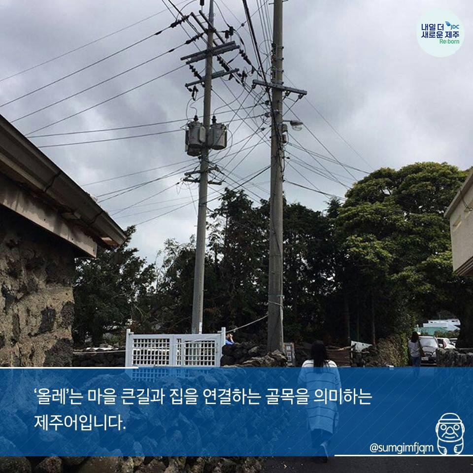 올레는 마을 큰길과집을 연결하는 골목을 의미하는 제주어 입니다.